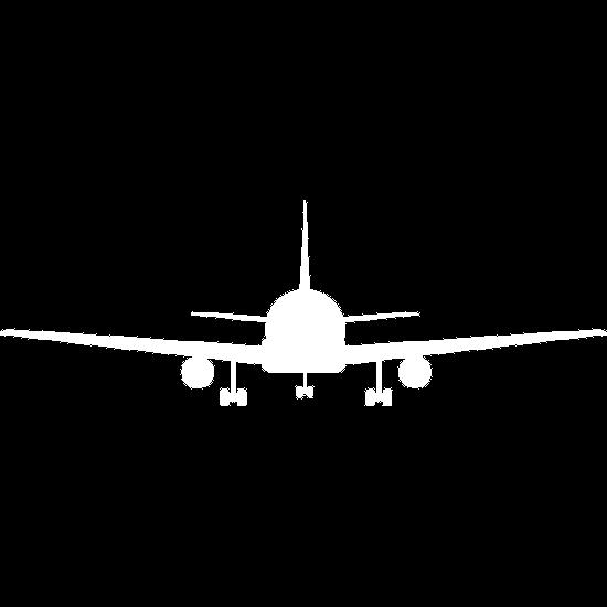 Airplane facing forward
